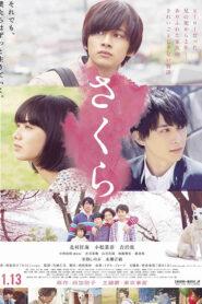 Sakura (2020) ซากุระ