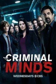 Criminal Minds Season 13 อ่านเกมอาชญากร ปี 13