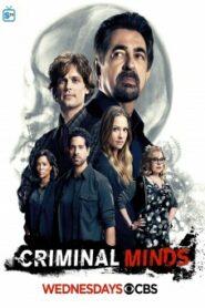 Criminal Minds Season 12 อ่านเกมอาชญากร ปี 12