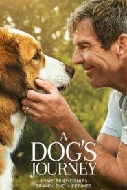 A Dogs Journey (2019) หมา เป้าหมาย และเด็กชายของผม